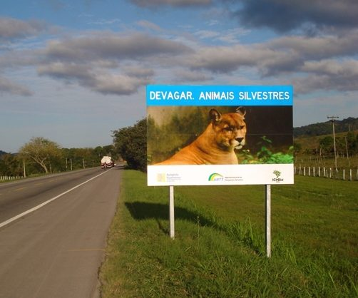 animaisilvestres