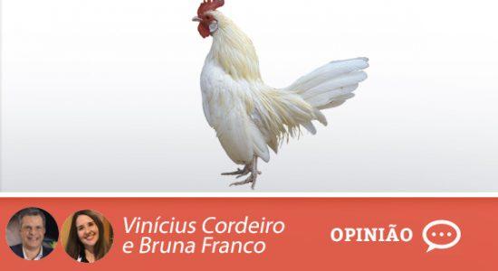 bruna-e-vinicius