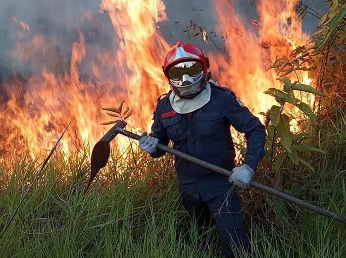 Incêndios florestais devastam a floresta amazônica