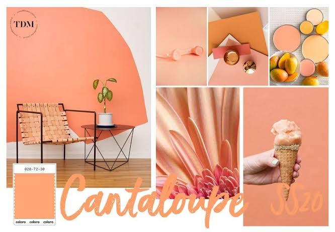 Cantaloupe, um coral