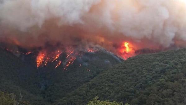 Incêndio na Austrália é quase 6 vezes maior que no Brasil